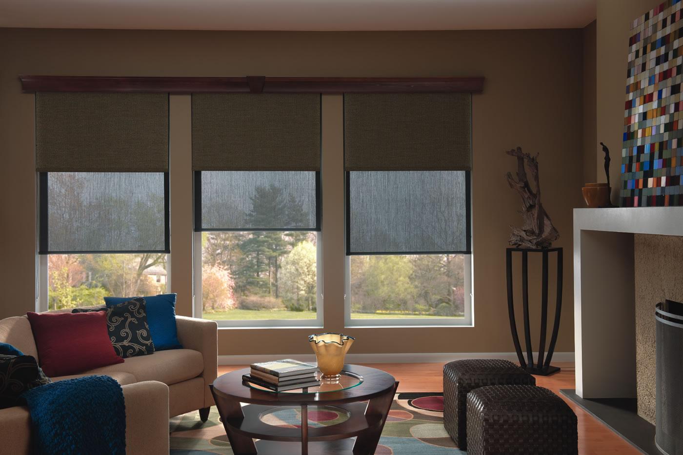 to shades blinds roller en rollershade go livingroom custom and made blindstogo highlands